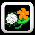 Icon-00-Fleur2