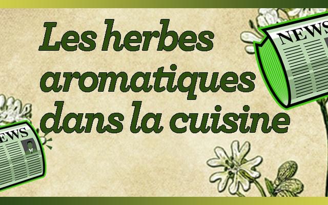 Les herbes aromatiques dans la cuisine