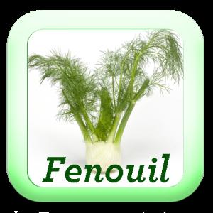 Icon-Fenouil