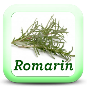 Icon-Romarin