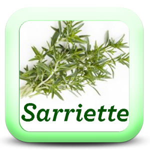 Icon-Sarriette