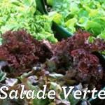La salade verte. Des panerées de fruits et légumes Asperges, carottes, courgettes, poireaux, radis, salades, tomates, etc … mais aussi, fraises, poires, pommes, etc … Tous ces légumes et fruits se succèdent dans votre potager, au fil des saisons, pour venir égailler vos repas.