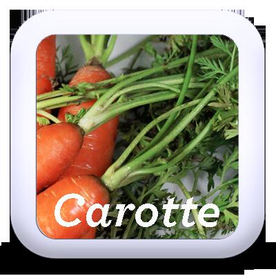 Recettes pour cuisiner les fanes de carottes nouvelles