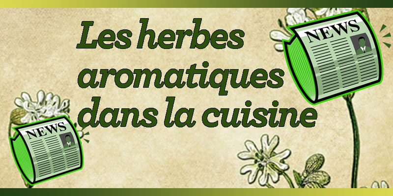 Les herbes aromatiques dans la cuisine