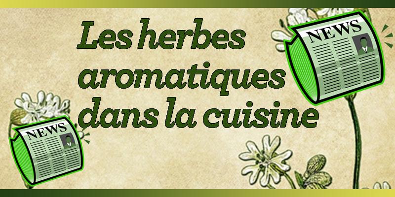 Je cuisine mon potager un site pour mieux connaitre les - Herbes aromatiques en cuisine ...