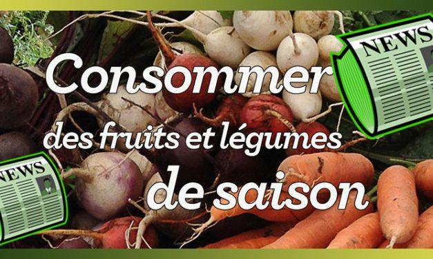 8 bonnes raisons pour manger des fruits et légumes de saison