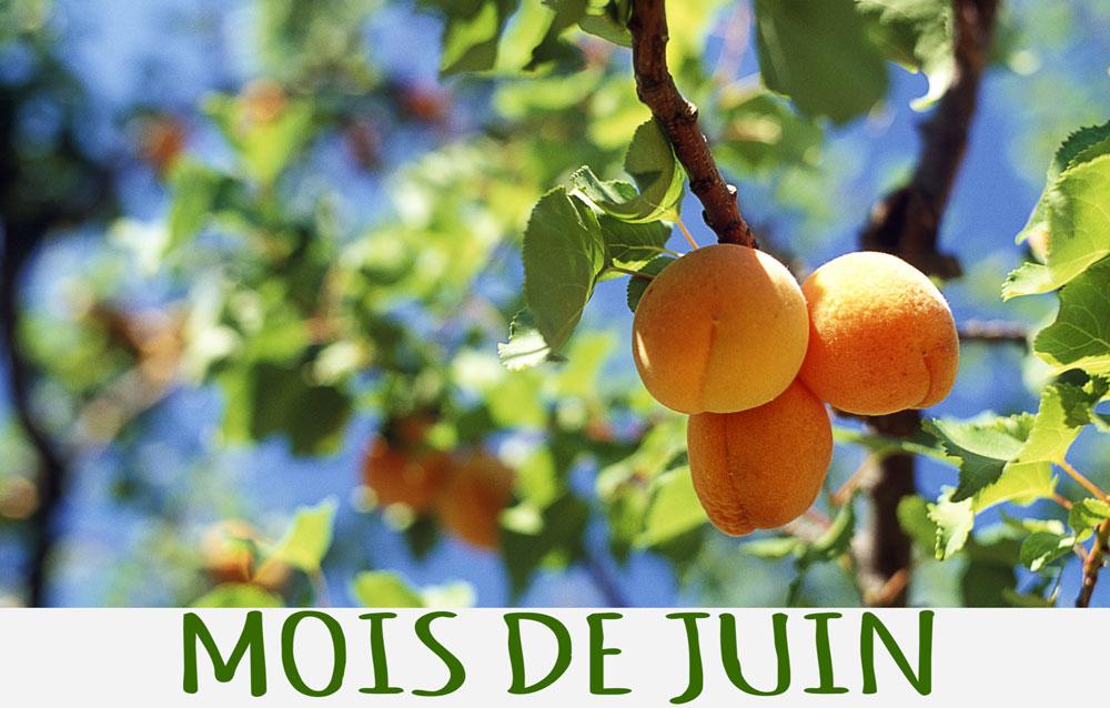 Mois de Juin : le soleil est de plus en plus présent, les températures grimpent et les fruits et légumes de saison prennent de la couleur !