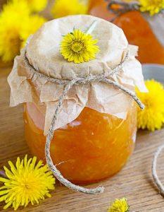 confiture fleur pissenlit. Des recettes de conserves pour les légumes et fruits de votre potager et de votre verger : lacto-fermentation, stérilisation, sel, sucre, huile, vinaigre