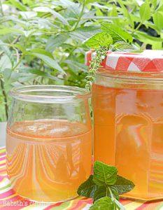 jus de pomme. Des recettes de conserves pour les légumes et fruits de votre potager et de votre verger : lacto-fermentation, stérilisation, sel, sucre, huile, vinaigre
