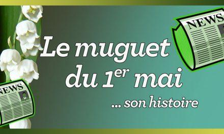 Le muguet porte-bonheur du 1er mai, son histoire…
