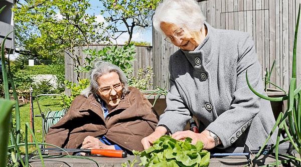 La thérapie par le jardinage