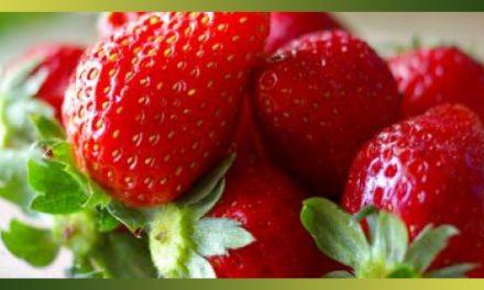 La fraise, fruit star des beaux jours