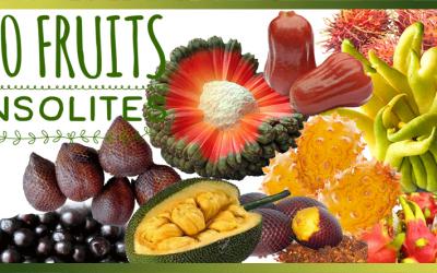 10 fruits Insolites à découvrir ! Partez pour un tour du monde à la découverte de ces fruits méconnus