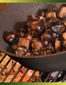 Marrons ou châtaignes au feu de bois