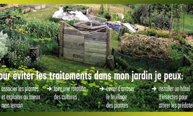 Un jardin potager naturel et malin, bon pour la santé