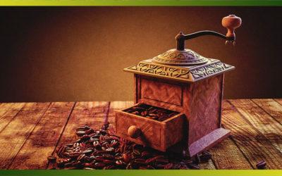 Les utilisations du marc de café au potager et chez soi