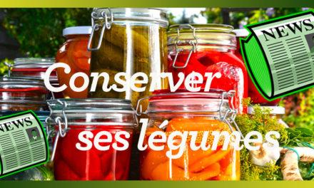 Je conserve mes légumes en bocaux et autres…