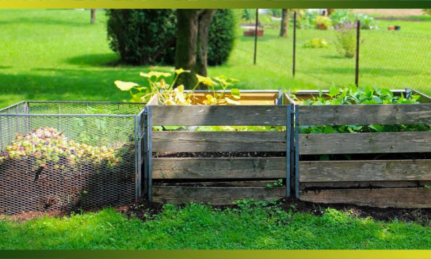 Comment faire son compost : astuces, emplacement